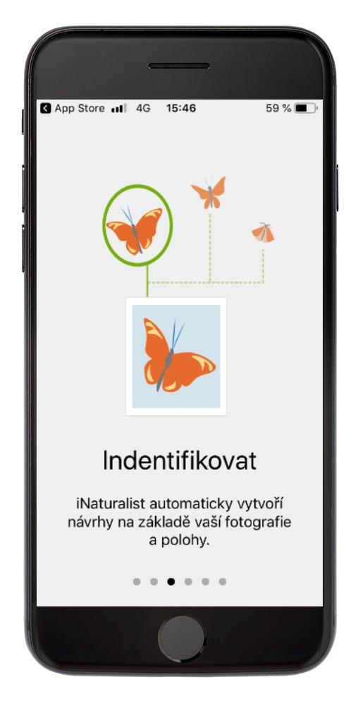 iNaturalist – identifikovat
