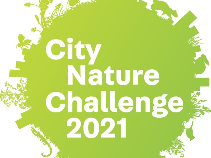 City Nature Challenge se blíží